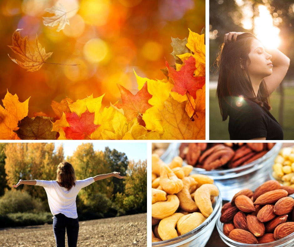 les légumes de l'automne