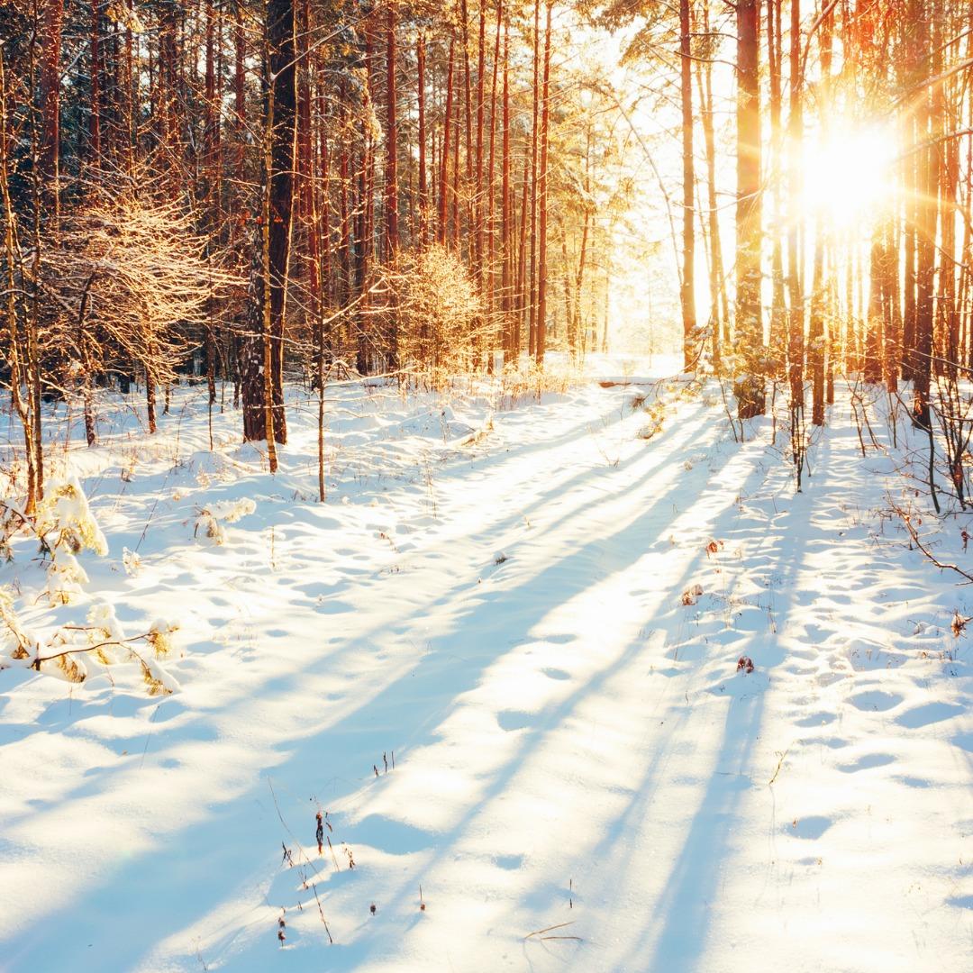 Les 10 conseils naturels pour être en pleine forme cet hiver