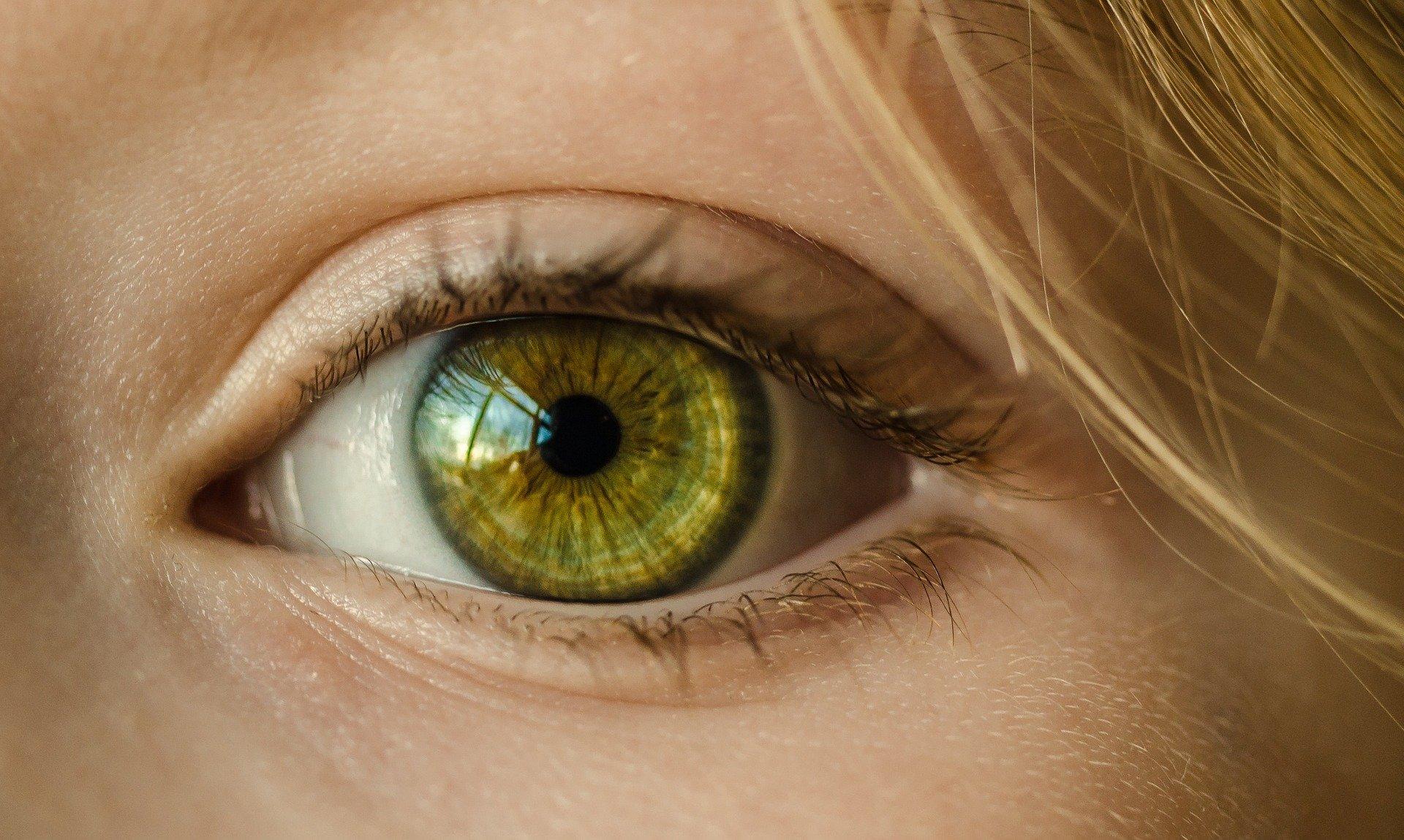 Yoga des yeux, qu'est-ce que c'est ?