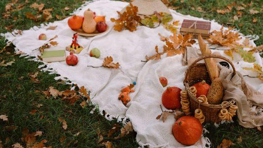photo pour l'article fruits et légumes d'automne 2